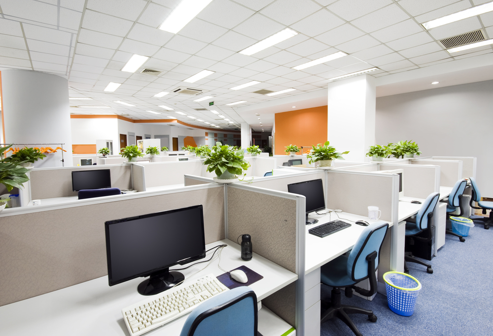 Green-Office-Space1