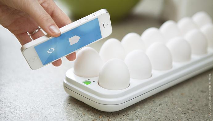 egg-minder-2