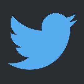 TwitterLogo-dark2-s